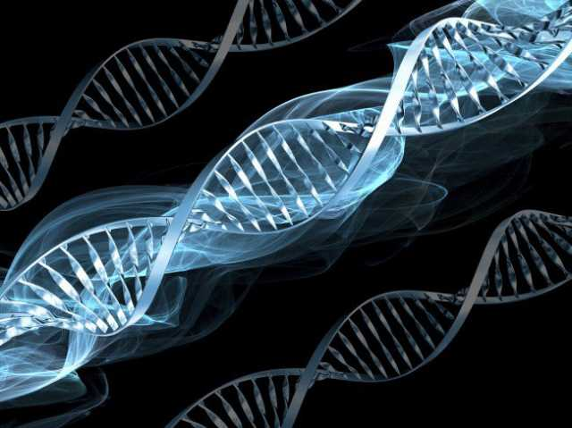 A gene discovery may have just cured all cancer 1
