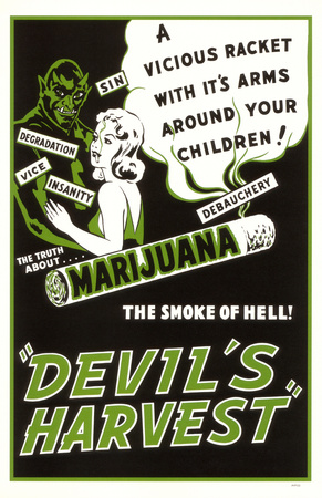 The Cannabis Conspiracy 11