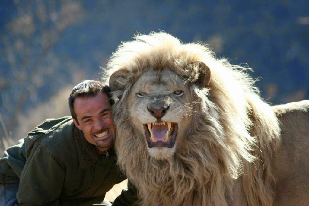 02 lion