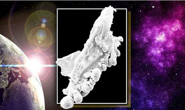 The incredible picture that 'PROVES' there is life on other planets 12