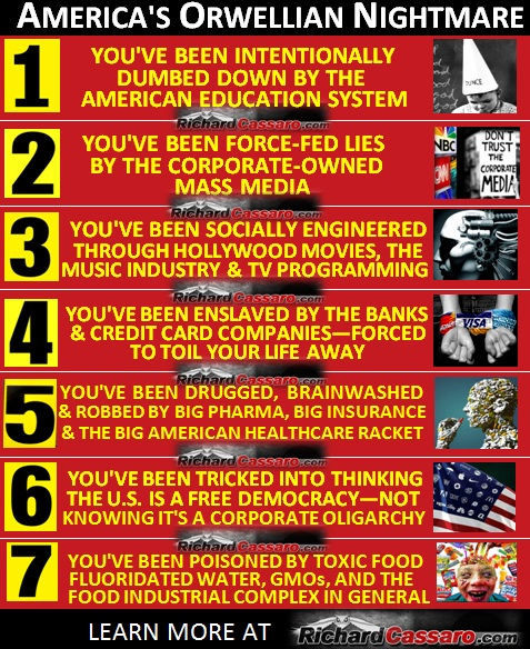 America's Orwellian Nightmare: Seven Ways To Awaken And Remember Who You Are 185