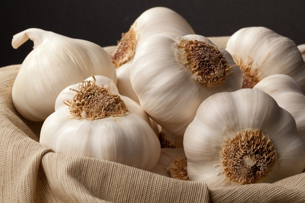 Garlic Soup – 100x Stronger Than The Best Antibiotics On The Market  91