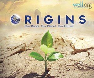 Origins-300x250