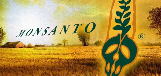 POLL: Monsanto Third Most Hated Company In the World 109
