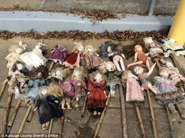 Twenty-one porcelain dolls on bamboo stakes found in Alabama swamp, some missing heads  92