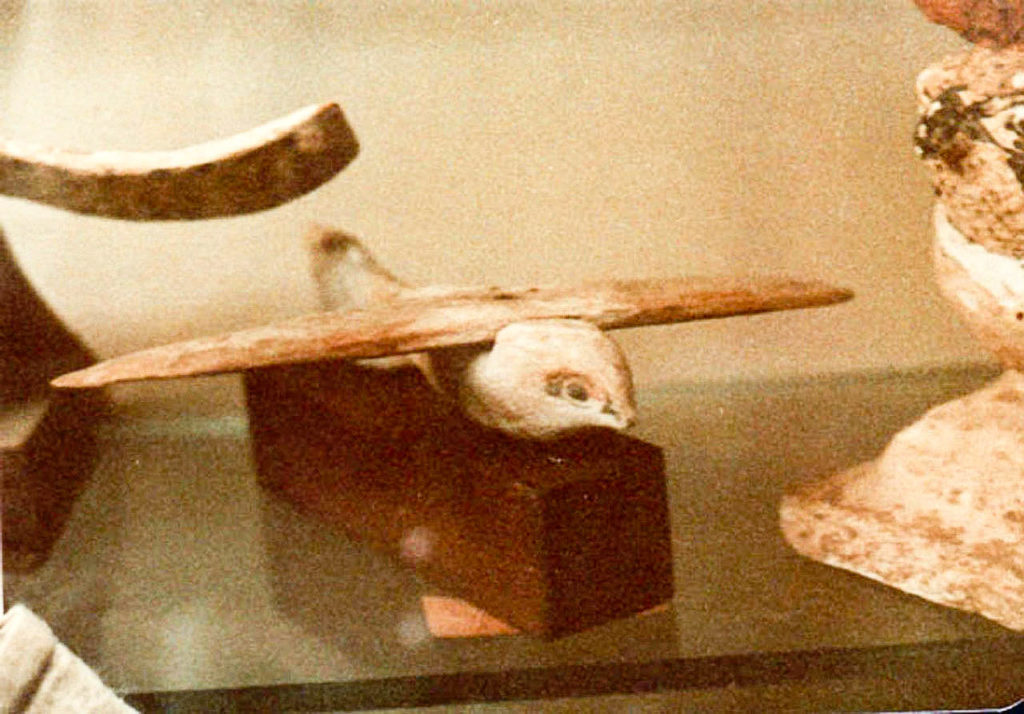 Did Ancient Egyptians Have Airplanes? Mechanical Engineer Thinks So 10