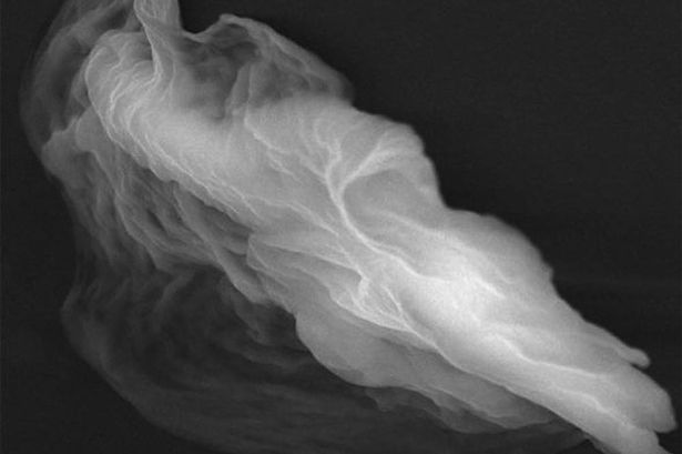 Ghost Particle