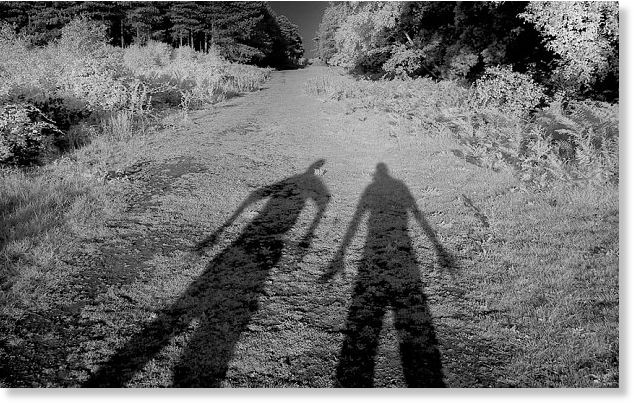 Britain's Roswell: the truth behind the Rendlesham Forest UFO incident 9