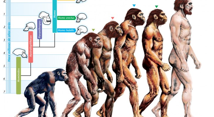 Evidence Suggests That Charles Darwin's Theory Of Human Evolution Is Wrong 3