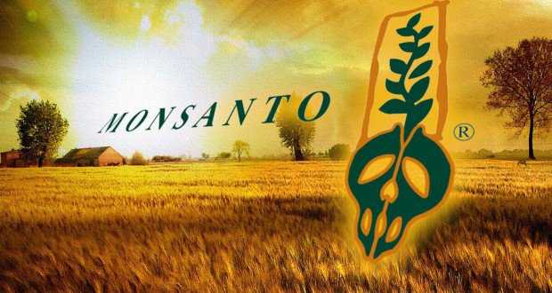 Monsanto: Destroying The Brains And Health Of Everyone 93