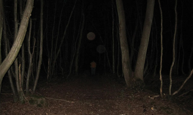 The World's 7 Most Haunted Forests Will Make You Never Try Camping Again 102