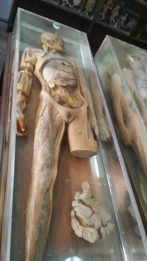 What's Hiding In This Innocent-Looking Museum In Thailand Is Seriously Freaky 29