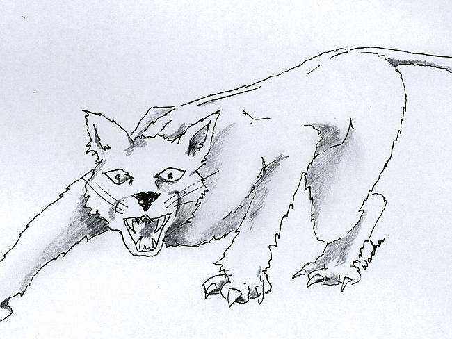 Elusive ... Artists's impression of Lithgow panther. Picture: Supplied