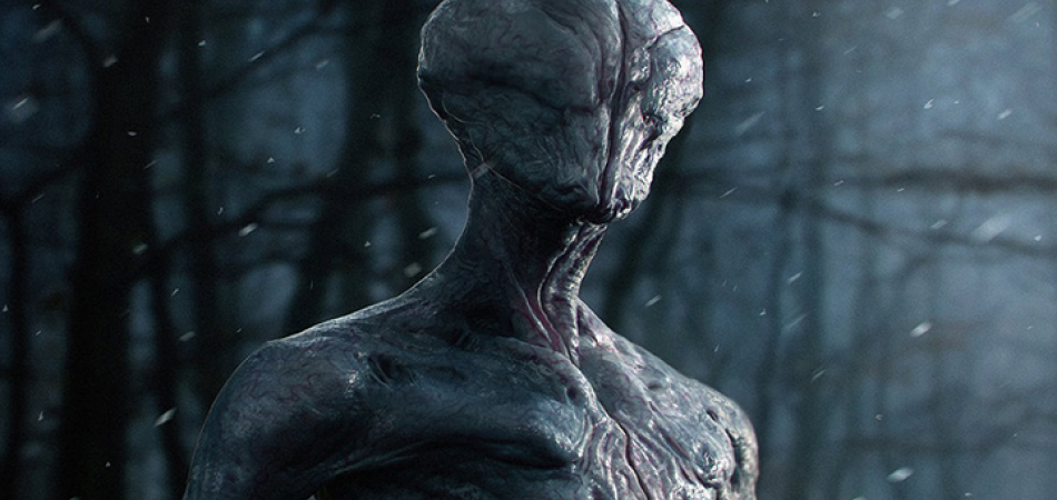 82 Alien Species Are In Contact With Earth 78