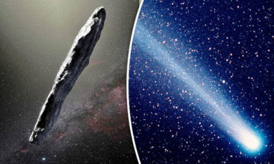 Oumuamua First alien object to visit our solar system is wrapped in strange organic coat 107
