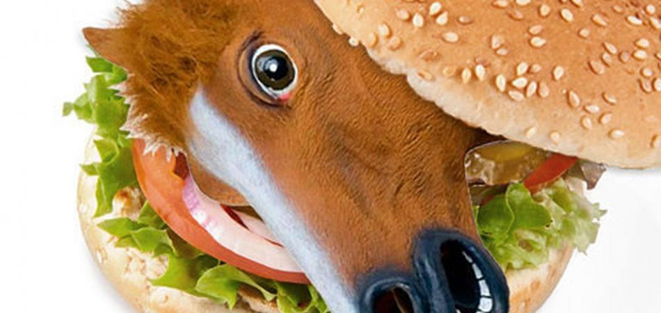 Goodbye, Burger King! Horse Meat In Burgers Confirmed 88