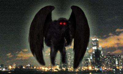 Repeated Mothman sightings in Chicago 104