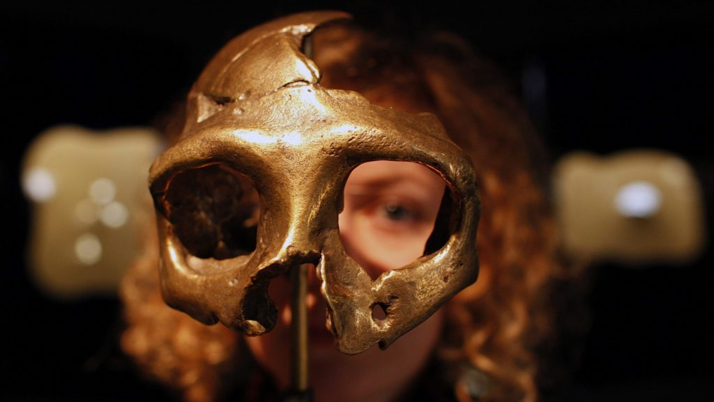 Israeli Archaeologists Find Oldest Human Remains Out of Africa, From Nearly 200,000 Years Ago – Earth Mystery News 98