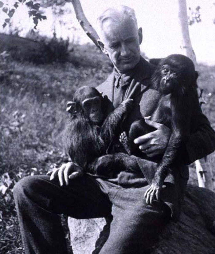 Scientist Claims US Lab Engineered 'Humanzee' Human-Chimp Hybrid 100 Years Ago 7
