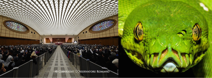 Inside the Pope's Reptilian Audience Hall in Vatican City 32