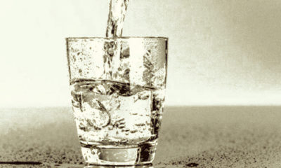 Fluorides, the Atomic Bomb, and FakeNews 87