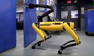 Boston Dynamics's SpotMini Just Unveiled a New Trick 95