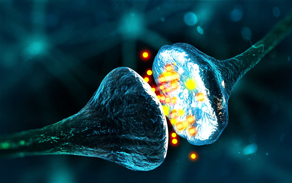 Memories in the Human Brain Could Soon be Manipulated by Scientists 35
