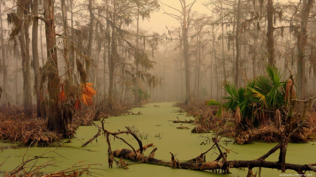Manchac -The Ghost Swamp of New Orleans 5