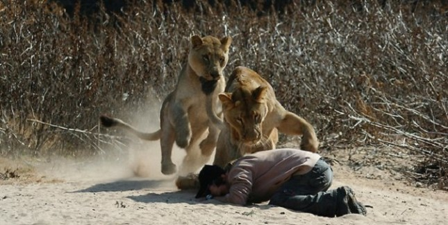 Church Leader Mauled By Lion After Trying To Prove God Would Intervene 6