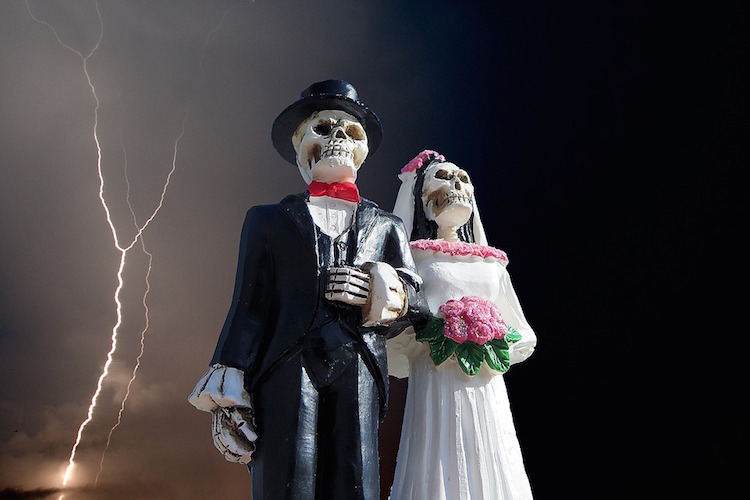 Monsanto and Bayer Tie the Knot – Don't Miss the Most Satanic Wedding of the Year 23