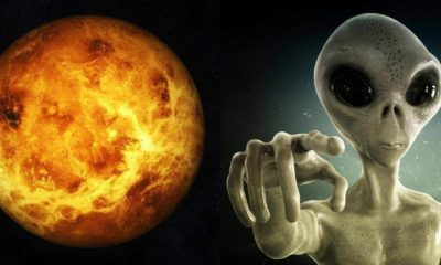 Extraterrestrial Life Could Be Thriving In The Clouds Of Planet Venus 98