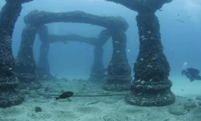 Lost City Of Atlantis Found In North Sea? 95