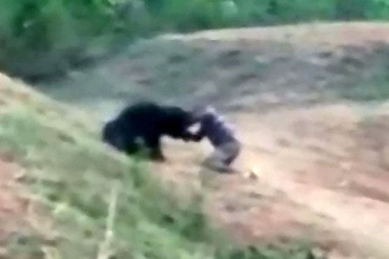 Indian man 'trying to take selfie with bear' mauled to death 8