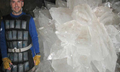 Nasa revives 'weird life forms' trapped in giant underworld crystals 89