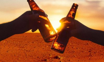 Beer on Mars: Students Find Red Planet Could Grow Hops 87
