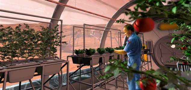 Babies born on Mars may be new subspecies 8