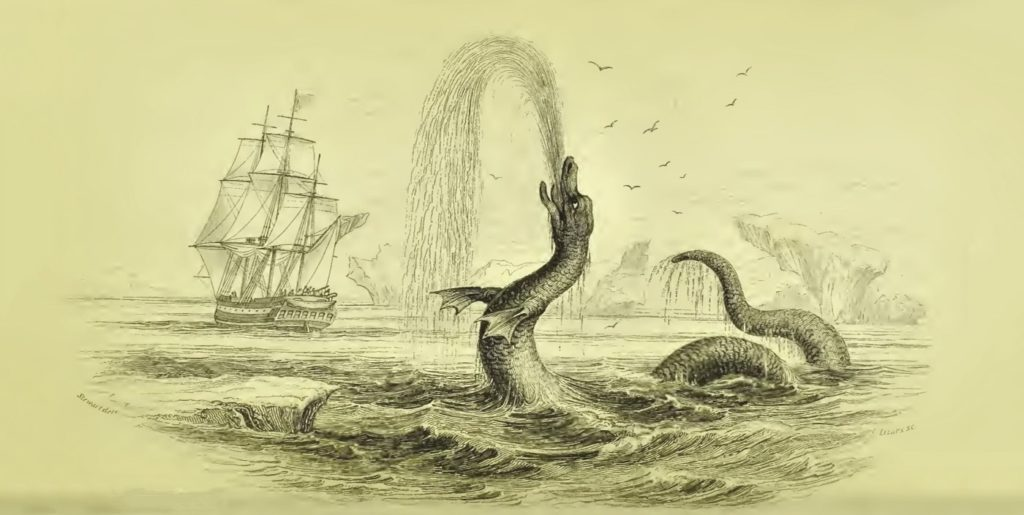 This Famous Sea Serpent Story Might Actually Have Been a Sighting of a Whale Penis 10