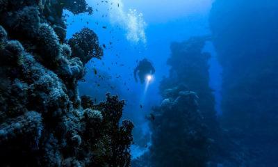Strangest things people have found underwater 93