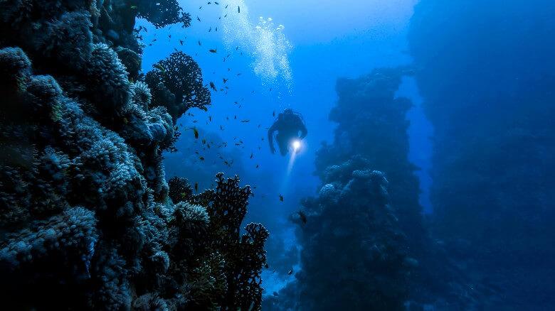 Strangest things people have found underwater 8
