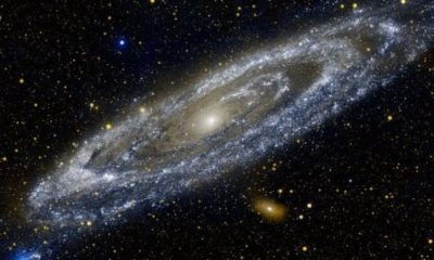 Andromeda killed and ate our galactic sibling 89