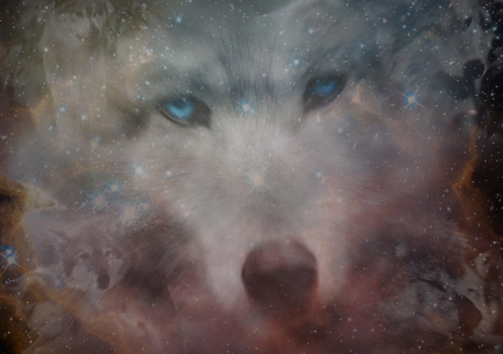 Animal Spirit Guides: How To Discover The Magic And Wisdom Of Your Original Power Animal 1