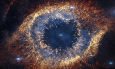 Scientists Now Believe the Universe Itself May Be Conscious 91