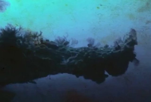 Researcher Found An Alien Shipwreck In The Bermuda Triangle 7
