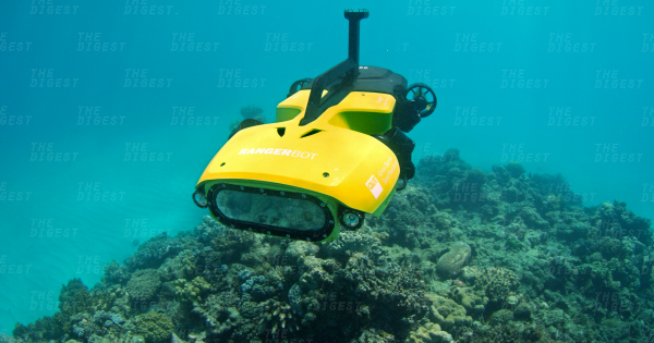This Autonomous Drone Is Ready to Defend the Great Barrier Reef From Predators 1