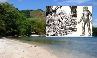 True Giants: Giant Race Which Still Lives In The Solomon Islands 95