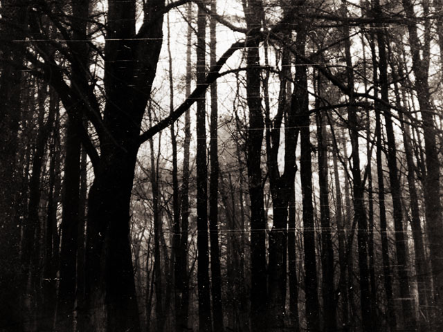 A Satanic cult in Wisconsin's Kettle Moraine State Forest