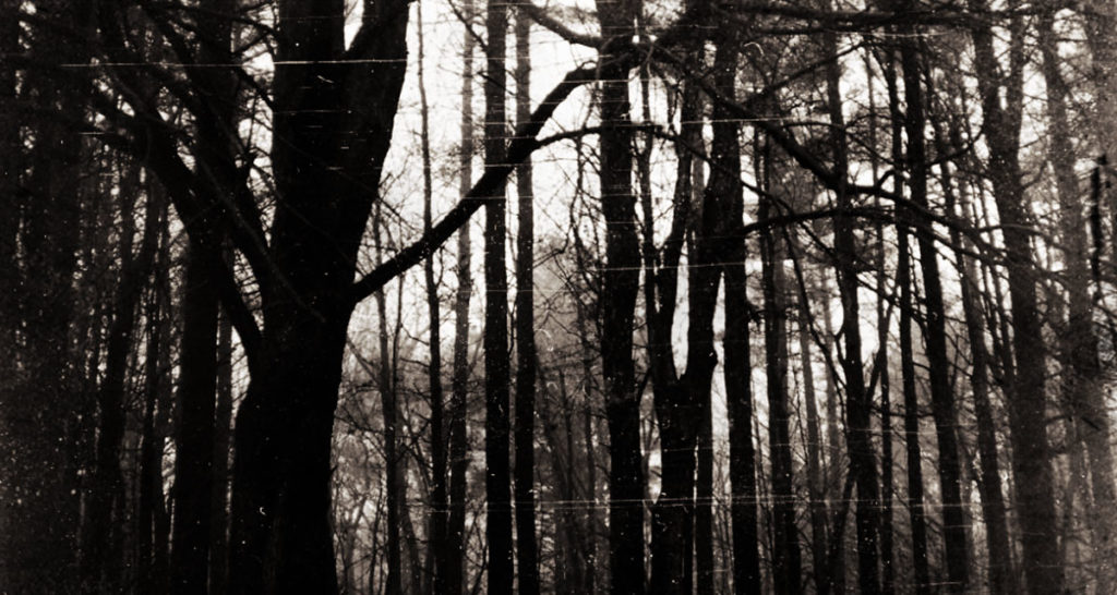 Occult rituals in the backwoods of Wisconsin 8