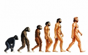 A Group Of 500+ Scientists Publishes Why They Reject Darwin's Theory of Evolution 4