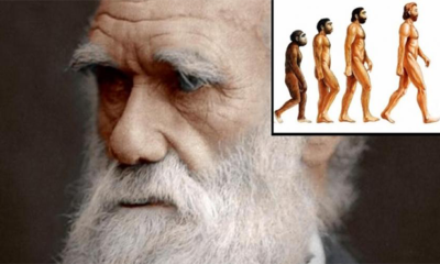 A Group Of 500+ Scientists Publishes Why They Reject Darwin's Theory of Evolution 89