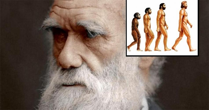 A Group Of 500+ Scientists Publishes Why They Reject Darwin's Theory of Evolution 3